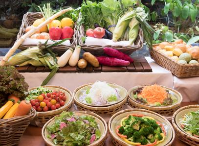 新鮮野菜の栄養を身体に補給